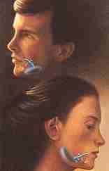 Chin and Cheek Augmentation